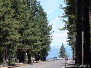 Bijou Pines