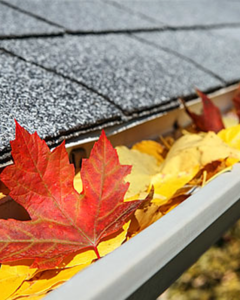 autumn leaves fill up the rain gutters