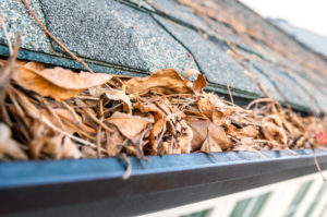 Dirty gutters full of leaves